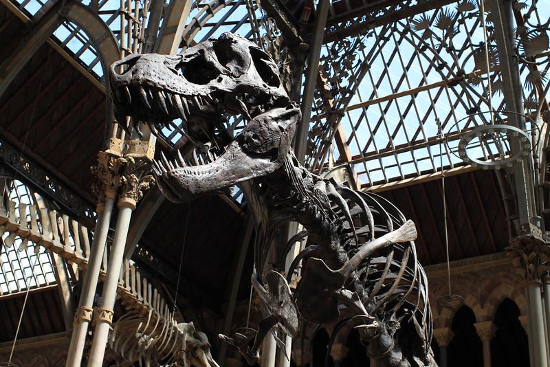 Jurassic Park anyone?