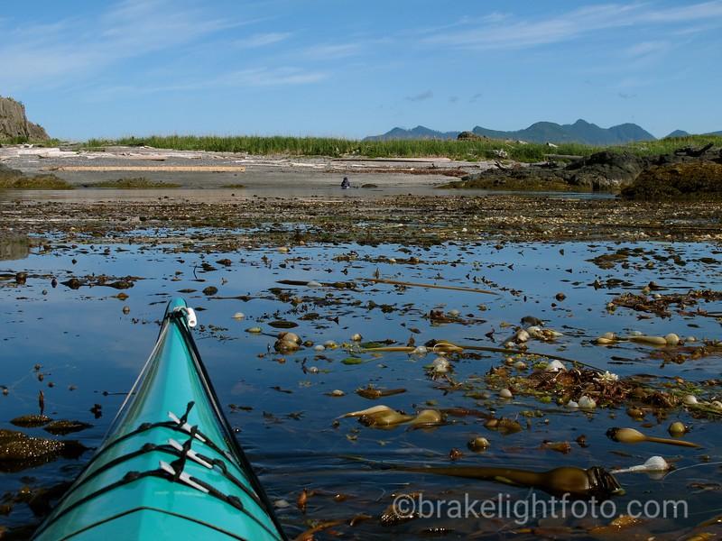 Thorton Island, Kyuquot Sound