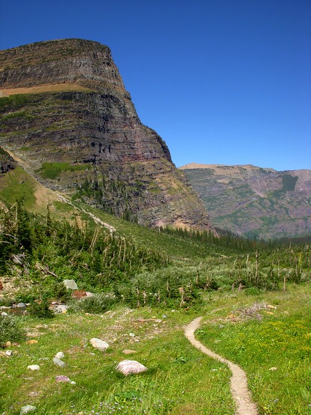 Piegan Pass Glacier National Park Montana