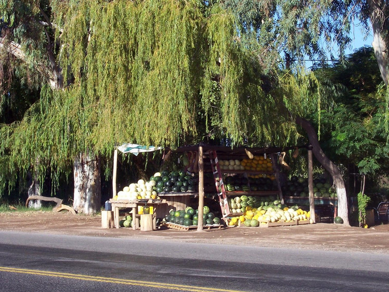The area south of Media Agua is the melon capital of Argentina.