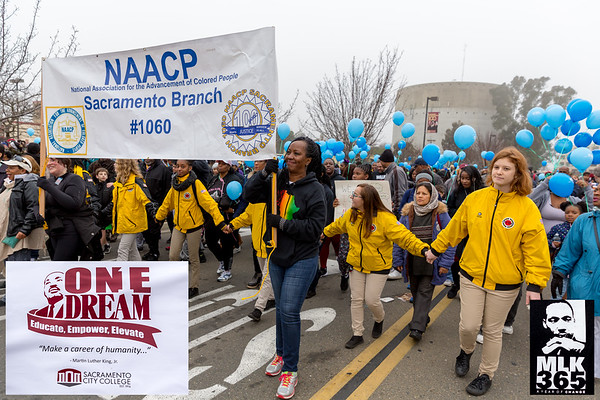Martin Luther King March for the Dream