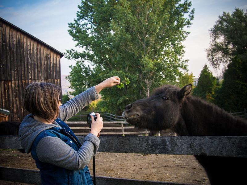 dana and horse.jpg