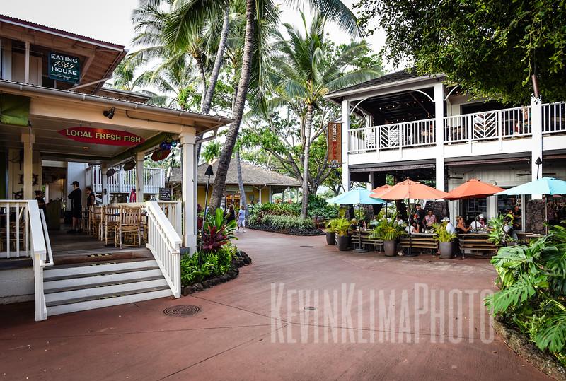 Kauai2017-142.jpg