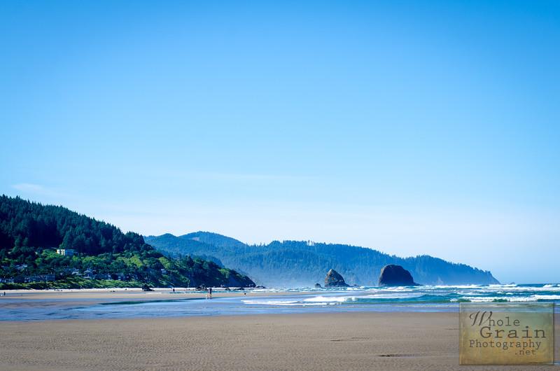 20160619_OregonCoast_0096.jpg