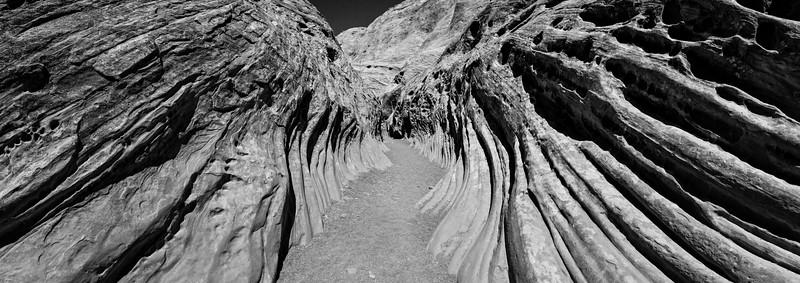 tmophoto_little wild horse canyon sandstone ribs.jpg