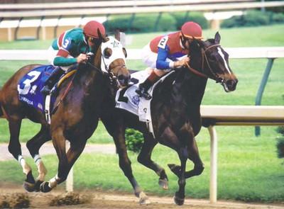 2003 Racing