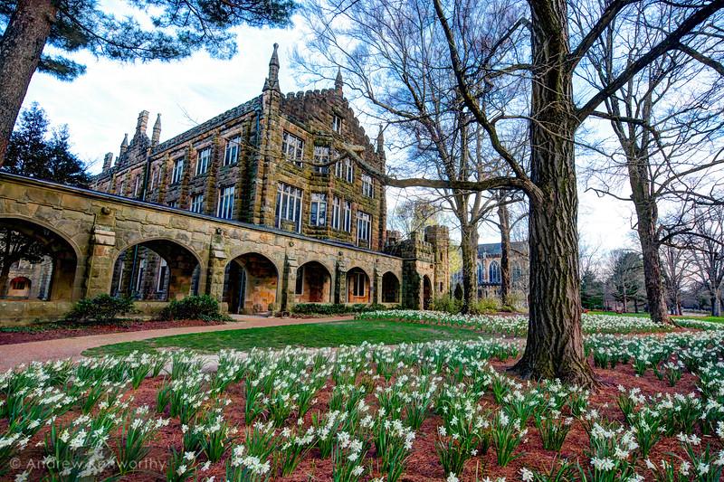Sewanee University of the South Spring 2.jpg