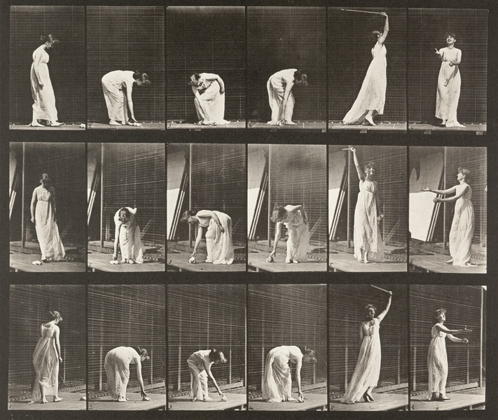 Woman performing various movements (Animal Locomotion, 1887, plate 503)
