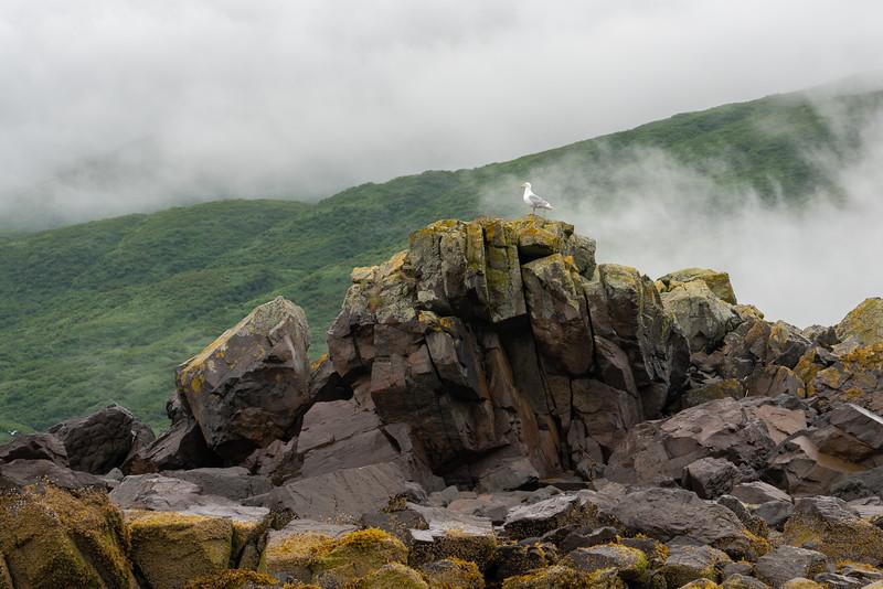 Alaska-353.jpg