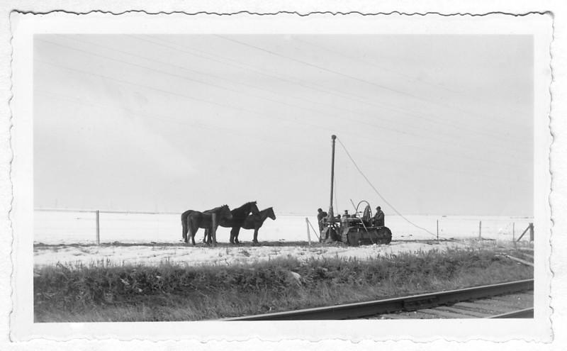 1939 Horses RR Equip.jpg
