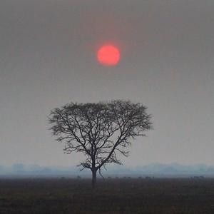 Kafue NP, Zambia 2017