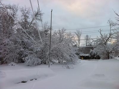 Big Snow Storm in Jan 2011