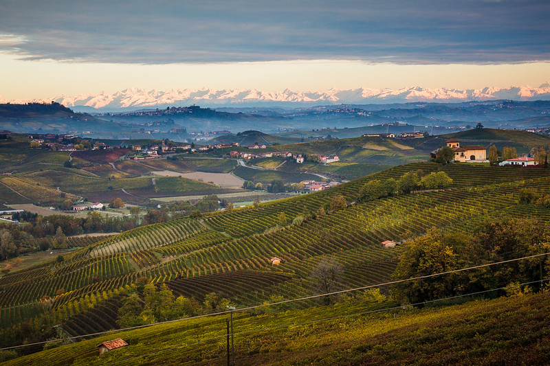 LANGHE_063_1010@ANDREAFEDERICIPHOTO.jpg
