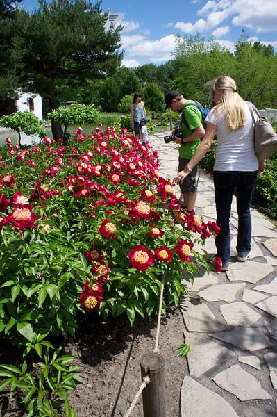 2013-06-15_Botanical~013.jpeg