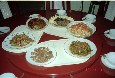 I do believe Henry Fan's mom prepared most of these dishes!