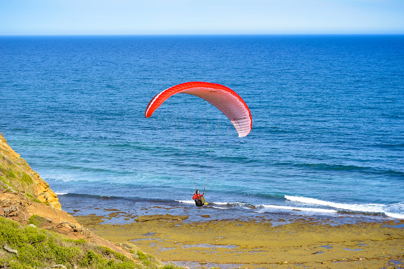 Bells Beach - NOV2017 - paraglider.jpg
