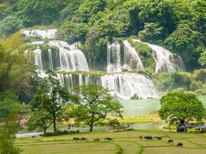 Vietnam Ban Gioc Falls_P1120715.jpg