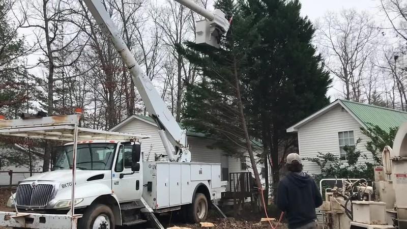 JG Tree Service