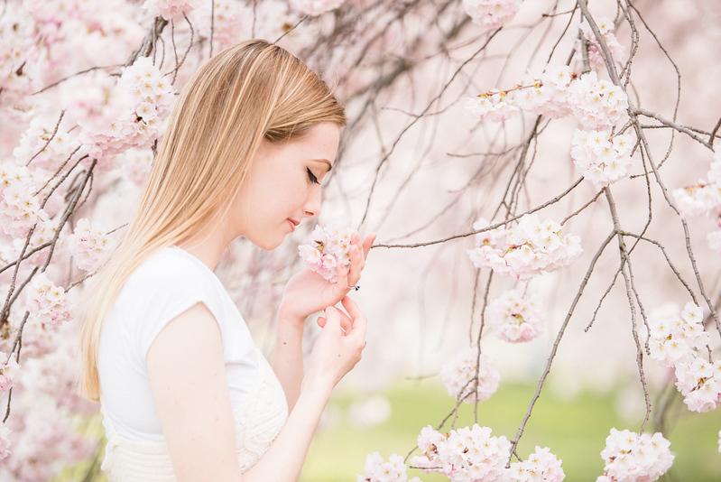 Cherry Blossoms (73 of 182).jpg