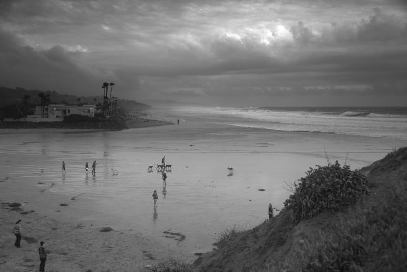 stormy day,  dog beach, Del Mar CA