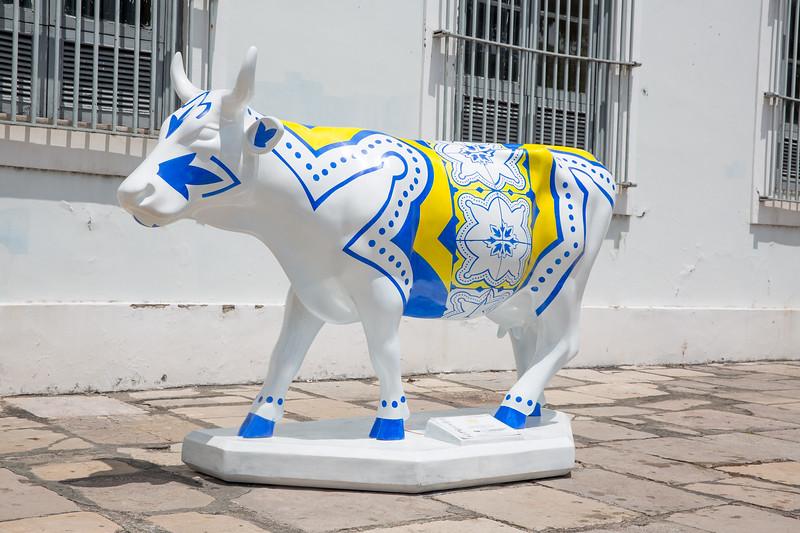 7 Cow Portuguesa_Claudio Assunção (3)