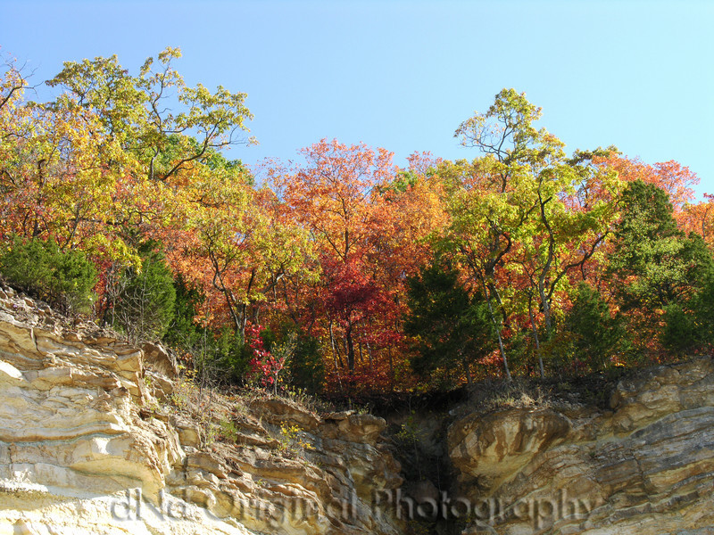 010 Oct 06 Changing Of The Season 13 - Pacific Bluffs.jpg