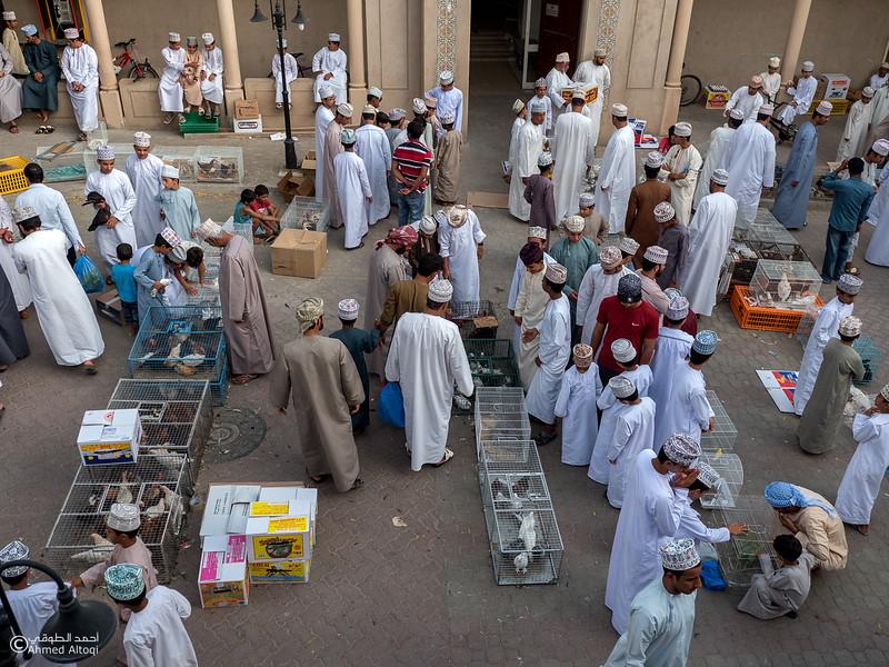 P1077114-Edit-Nizwa- Oman.jpg