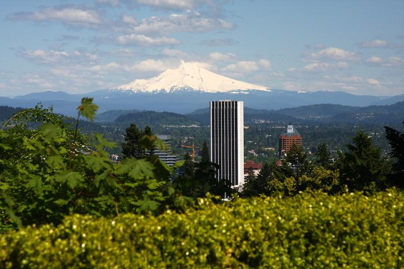 Portland Japanese Garden 6-3-11  1783.jpg