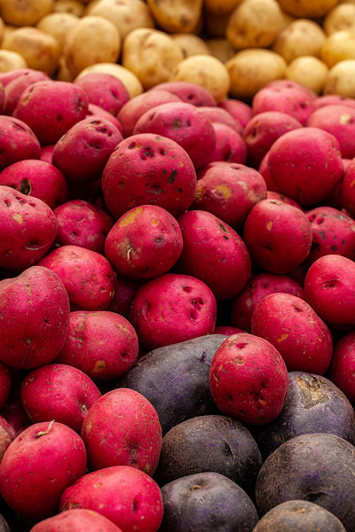 Farmers Market 566, Campbell, California, 2010