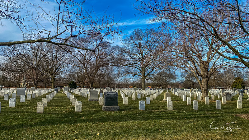 Arlington-14.jpg