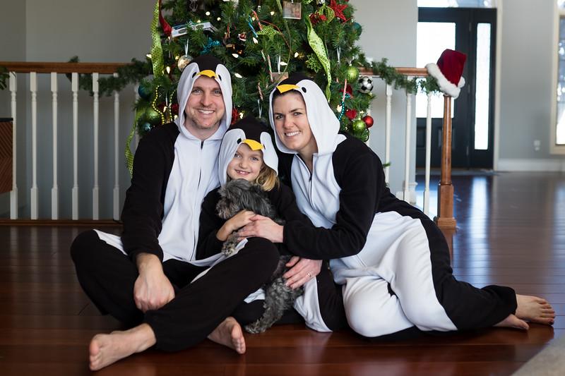 family pics 2019 christmas-5.jpg