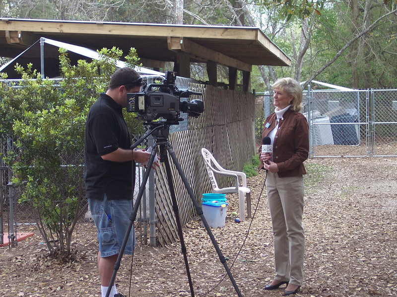 Carol Linville giving an interview on dog moving day