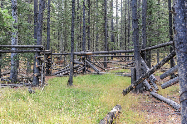 10 2013 Oct 17 Old Alberta Wild Horse Capture Corral*^