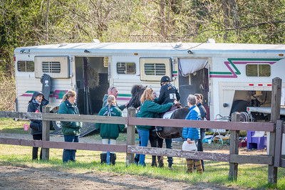 Horseshow 2015-05