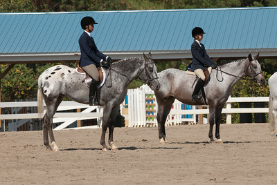 Class 34 - Hunter Equitation On the Flat, Small Horse, Sr. (14 - 15)