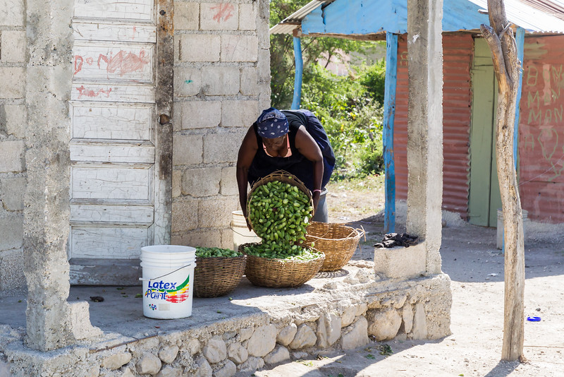 Haiti_2016_WEDS-600.jpg