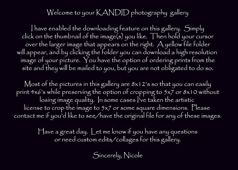 gallery description.jpg