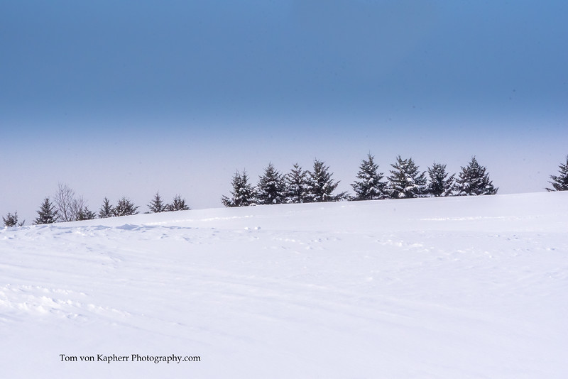 Tom von Kapherr Photography-7467.jpg