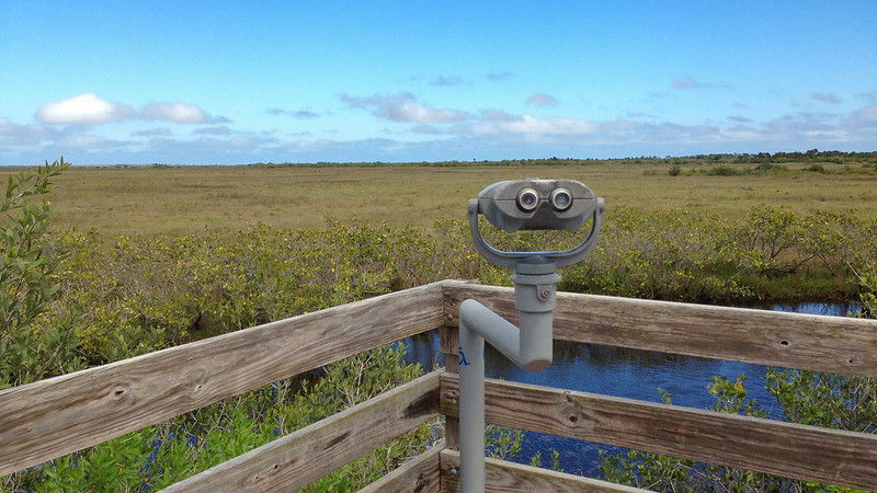 Mounted binoculars overlook salt marsh