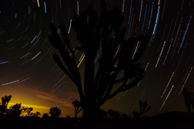 NV Star Trails.jpg