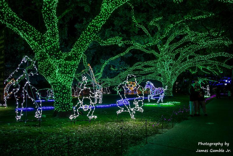 Houston-Zoo-Lights-2897.jpg
