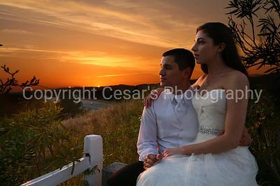 Dylan & Nicole Wedding