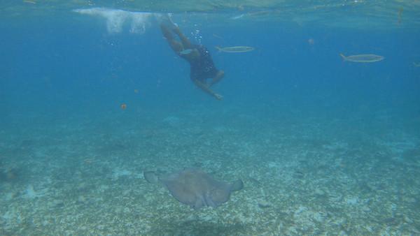 2014-01 Caye Caulker Belize