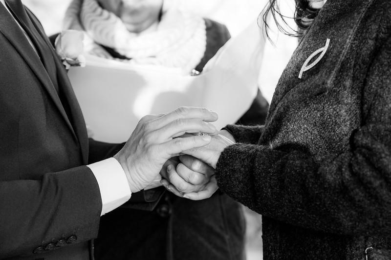Central Park Wedding - Leonardo & Veronica-19.jpg
