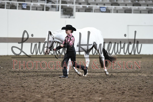 Champion 4-H Junior Western Showmanship