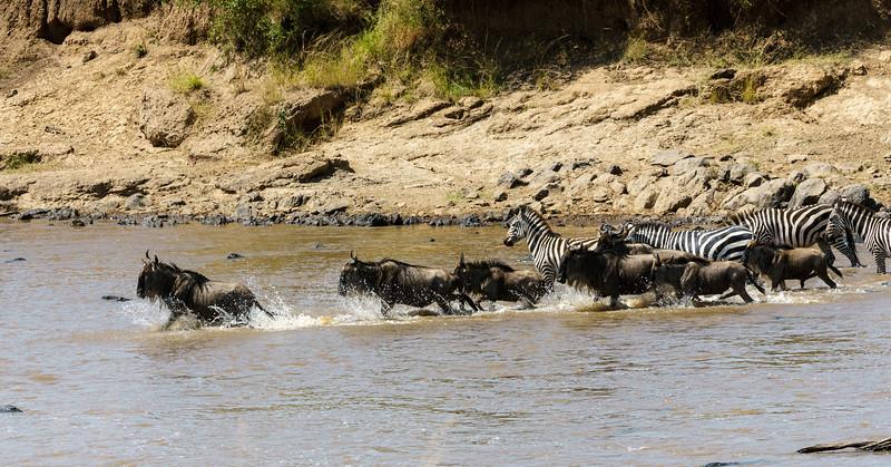 Kenya 2015-03750.jpg