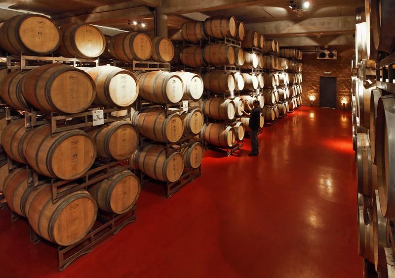 Control de vino añejando en barrica