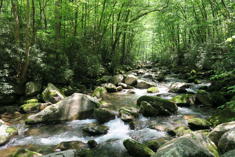 Mouse Creek Falls (4.0 miles; d=5.50)