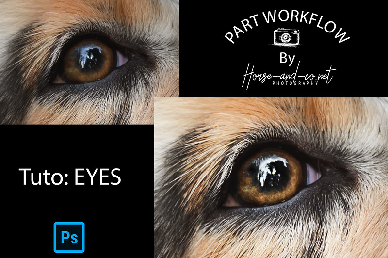 Part-worflow-EYES-PS-Debut.jpg