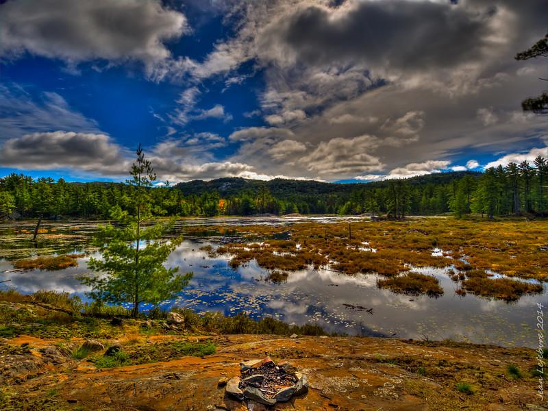 The Bog on Artist Lake, Killarney Provincial Park